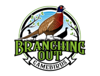 Branching Out Gamebirds